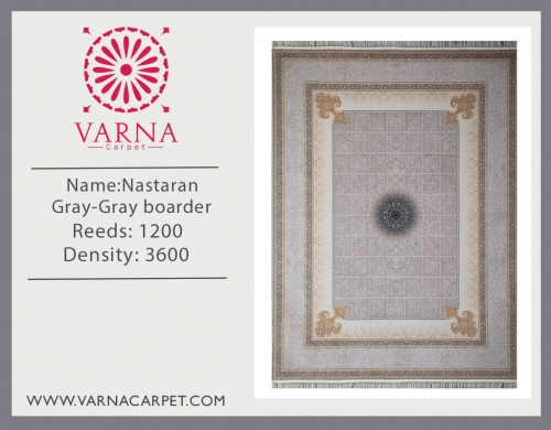 Nastaran Gray-Gray boarder