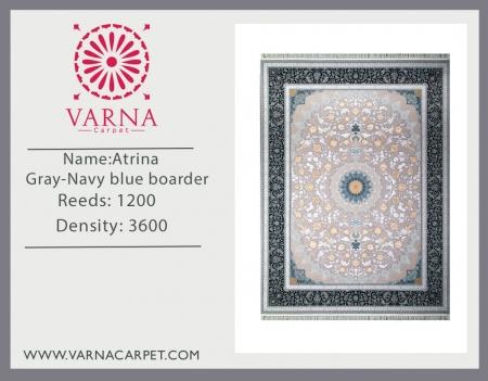 Atrina Gray-Navy blue boarder